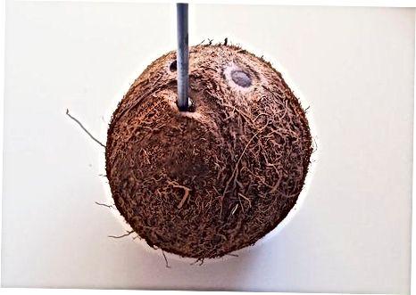Het kokosvlees verwijderen