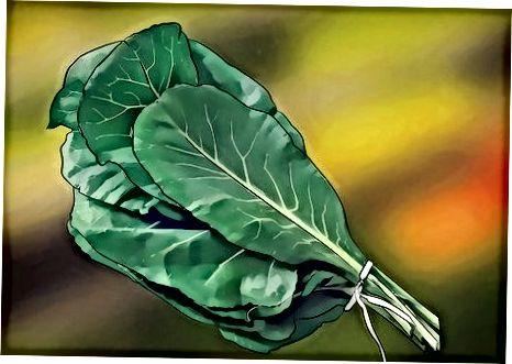 یافتن کالری سبز
