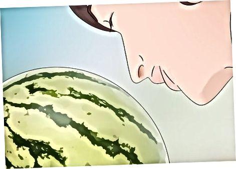 Sizning tarvuzingizni sinab ko'rish