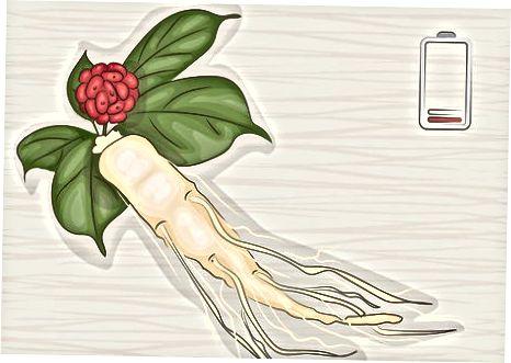 Ginsengingizni tanlash