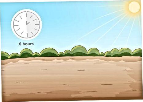 Zgjedhja e Vendndodhjes së Mbjelljes