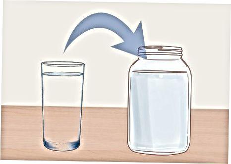 Aktivierung von Wasserkefirkörnern