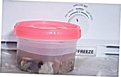 Хлађење или замрзавање измрвљених шкољки