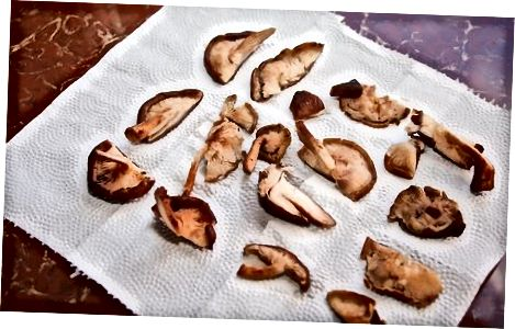 Gefriertrocknende Pilze