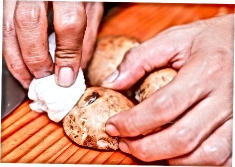 Portobello-Pilze [4] X Forschungsquelle