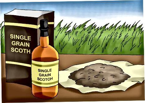 Pasirinkimas tarp škotų tipų