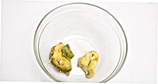 Praženje srca artičoke