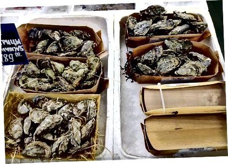 Priprava ostrige