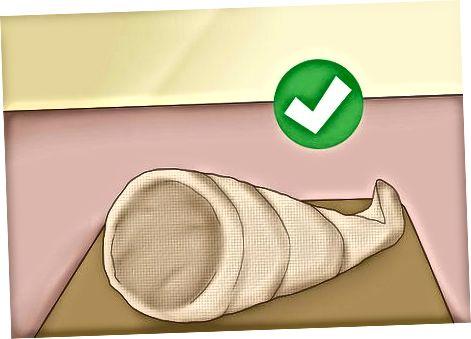 Raffia cornucopia (non o'rnini bosuvchi)