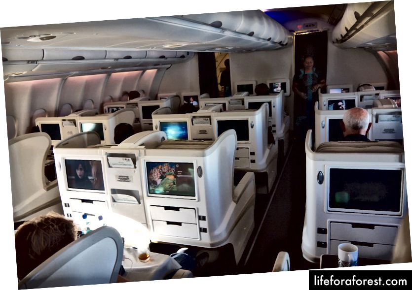 Fiji Airways A330 Business Class-ning umumiy ko'rinishi
