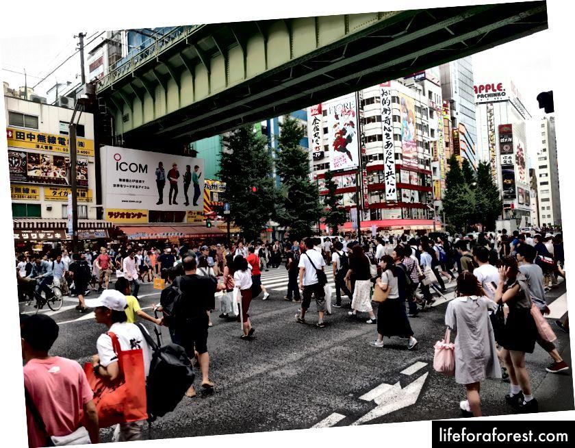 Ungdommer som folker gatene i Akihabara og søker etter Manga eller Games. Copywrite av Pietro Bagnasco.