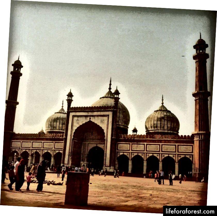 Tôi đã quay lại Delhi nhiều năm sau đó và chụp một bức ảnh về nhà thờ Hồi giáo xinh đẹp này và chia sẻ nó trên Instagram. Tôi đoán tôi đã nói rằng tôi không có một bức tranh nào công bằng cho những ký ức thời thơ ấu của Delhi. Chỉ cần lời nói và nhiều kỷ niệm bao gồm cả bể bơi hình quả đậu trong DSOI, nơi tôi đã học bơi.