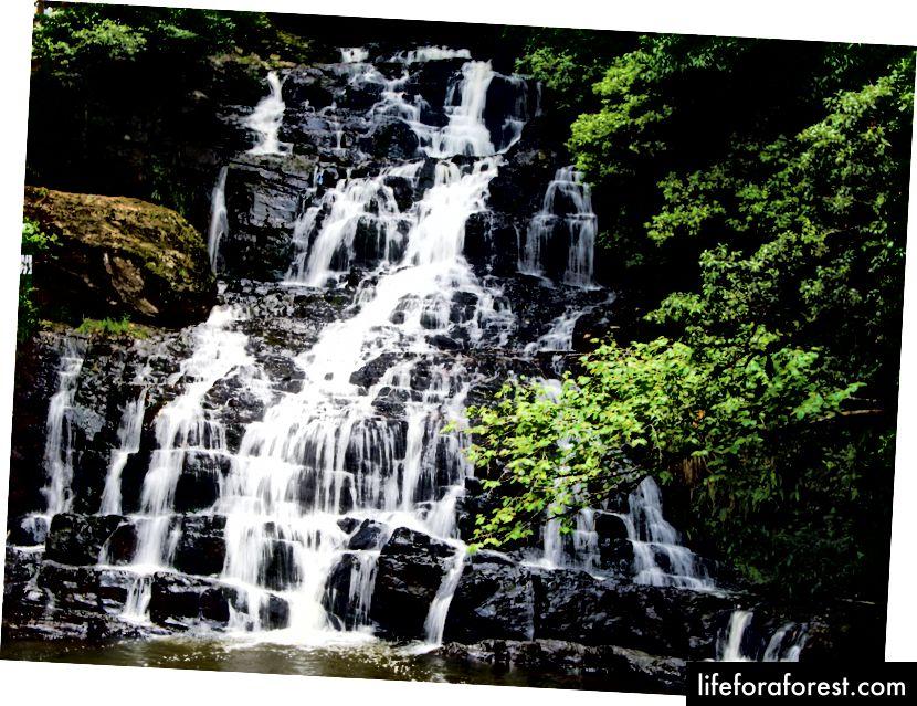 Thác Voi - cách nhà ở Shillong một quãng đi bộ ngắn. Tôi nhớ bạn.