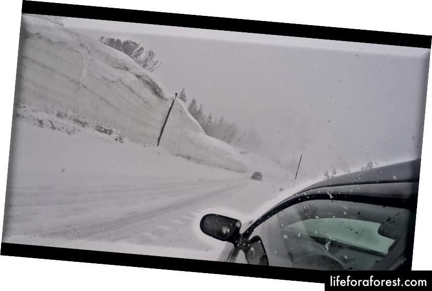 Tahoe Gölü'nü süren beklenmedik bir kar fırtınası, bizi umutsuzca sıkışıp kalmamamız ve arabanızı şort ve tişörtlerle itmemiz için dua etti.