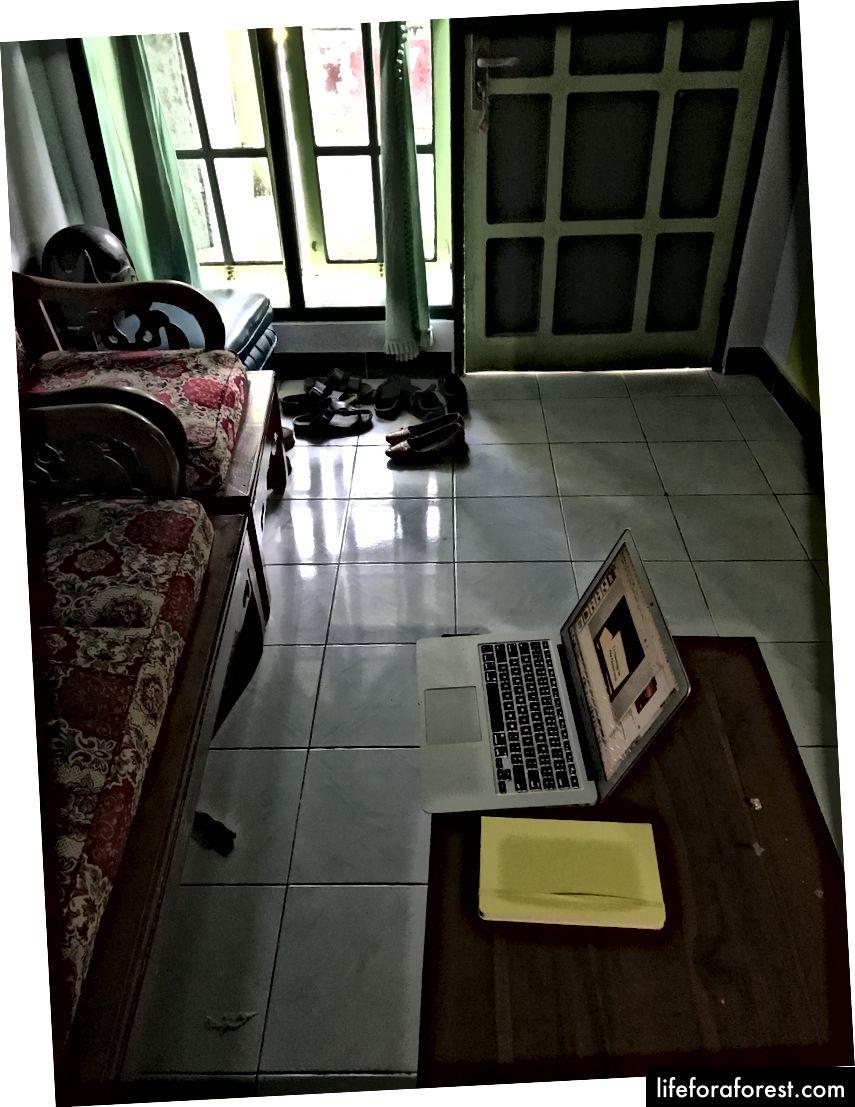 Наш офісний офіс LIL на місці дівчини.
