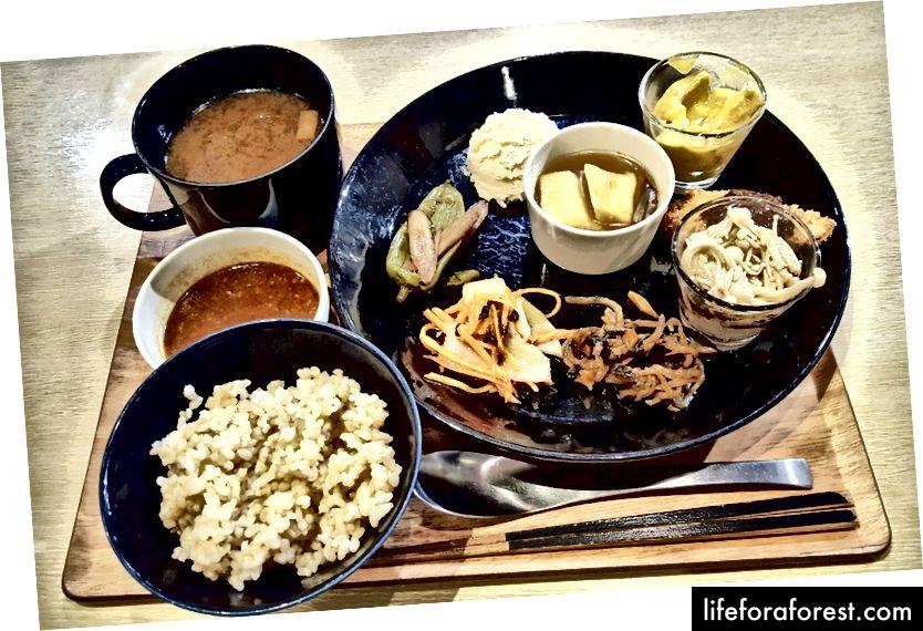 Et fast måltid med flere alternativer lagt til, Komaki Syokudo, Akihabara, Tokyo. Bildekilde: sunn debu.