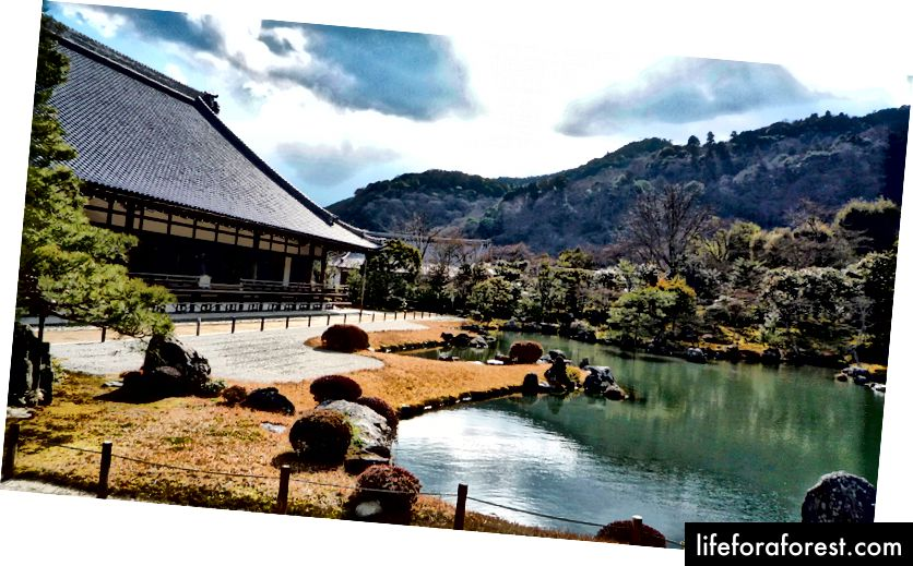 Tenryu Tapınağı, Arashiyama, Kyoto. Resim kaynağı: Wikimedia Commons aracılığıyla OsakaOsaka.