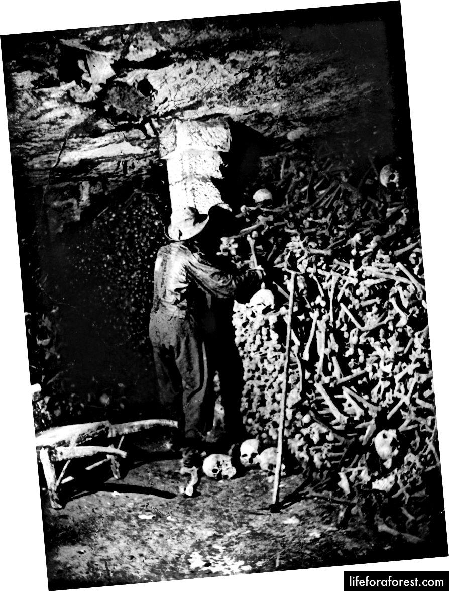 En arbeider i katakombene, ca 1870. | Nadar / Getty
