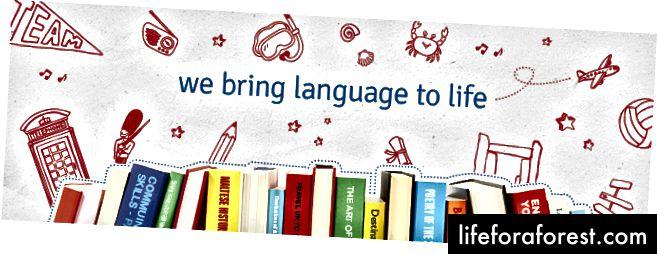 Це важко зробити саме в Стамбулі. Як ставляться до викладачів та працівників у мовних школах району, як це може бути?