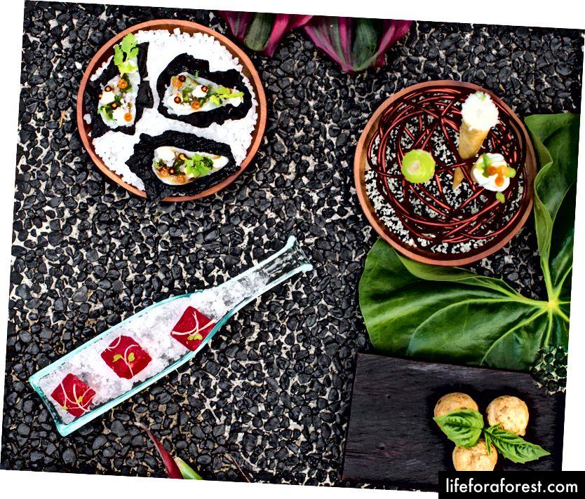 Mozaic - Mosaics đầy màu sắc và xây dựng thực phẩm