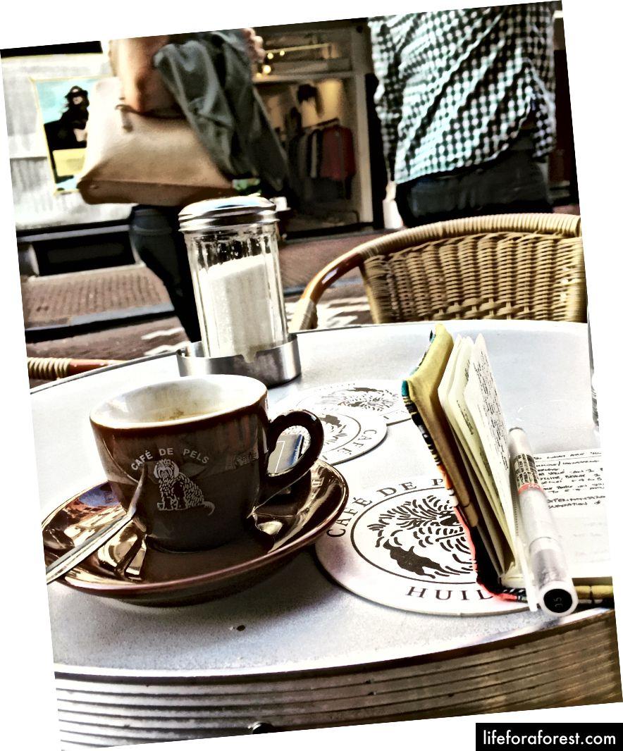 Pels kafesi