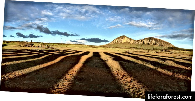 Posągi Moai o świcie na odległej Wyspie Wielkanocnej rzucały długie cienie w kierunku ich miejsca pochodzenia. Zdjęcie Ben Huh