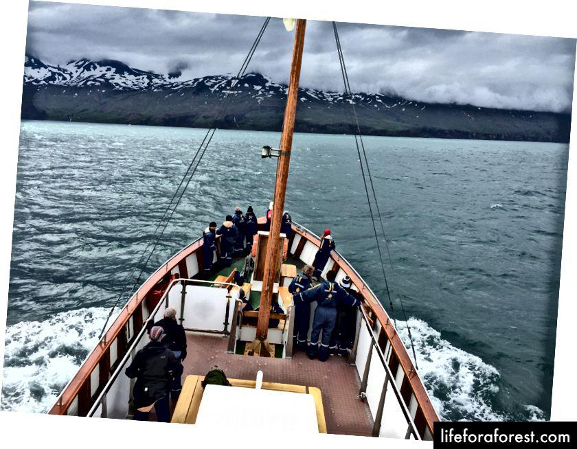 Ser over Skjálfandi-bukta, og drar bort fra Húsavík for å finne hvaler