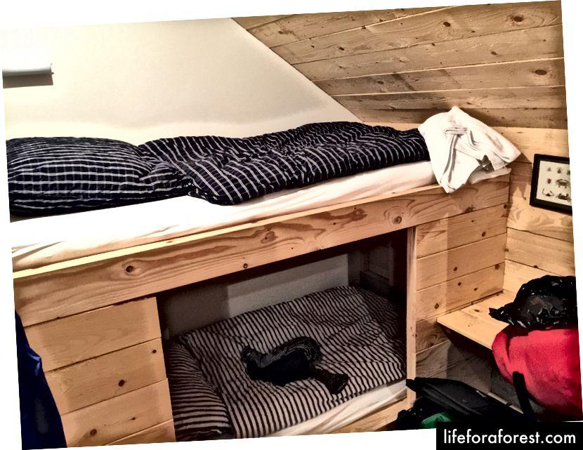Inni i det lille, men rene rommet vårt på Tungulending Guesthouse