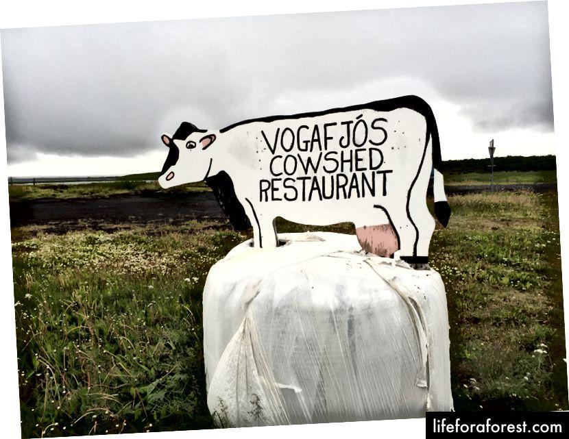 Vogafjos restorani tashqarisida