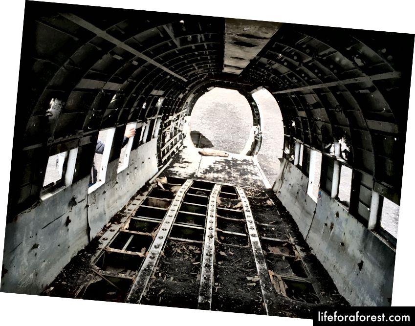 DC-3 vayronalari ichida