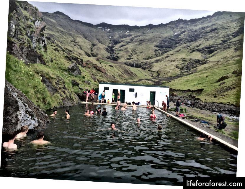 Svømming ved Seljavallalaug Pool