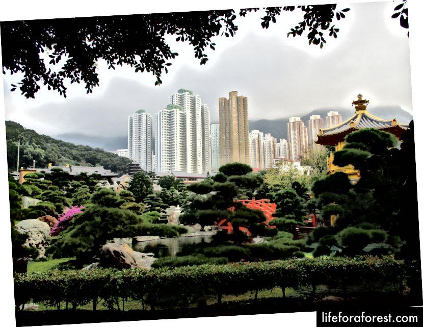 Grădina Nan Lian, Hong Kong