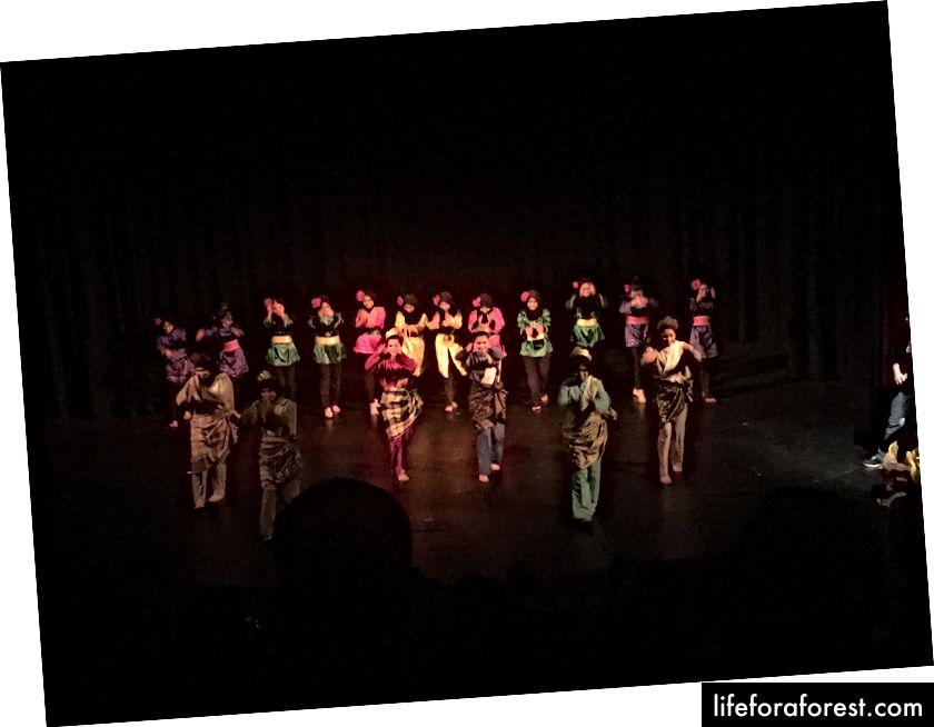 Îmbrăcați într-adevăr colorate dansatori malaezieni