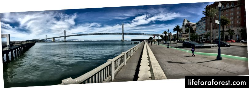 Bay Bridge: D