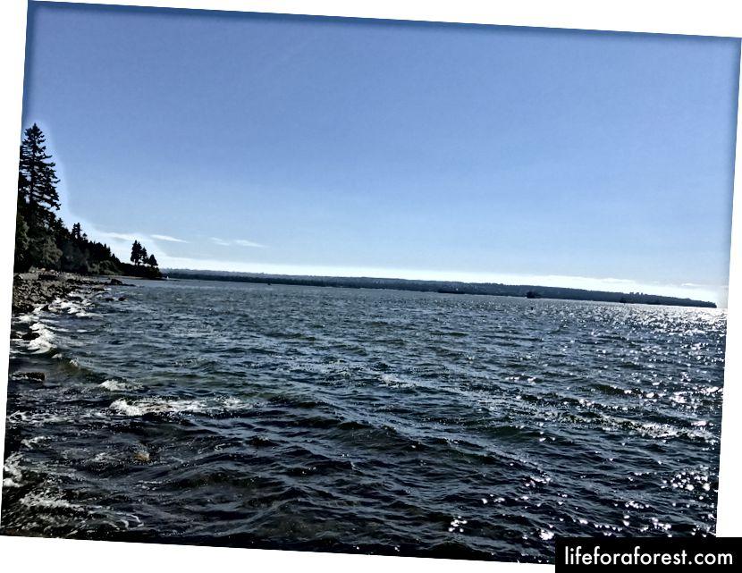 Fakt: Vancouver jest ładny