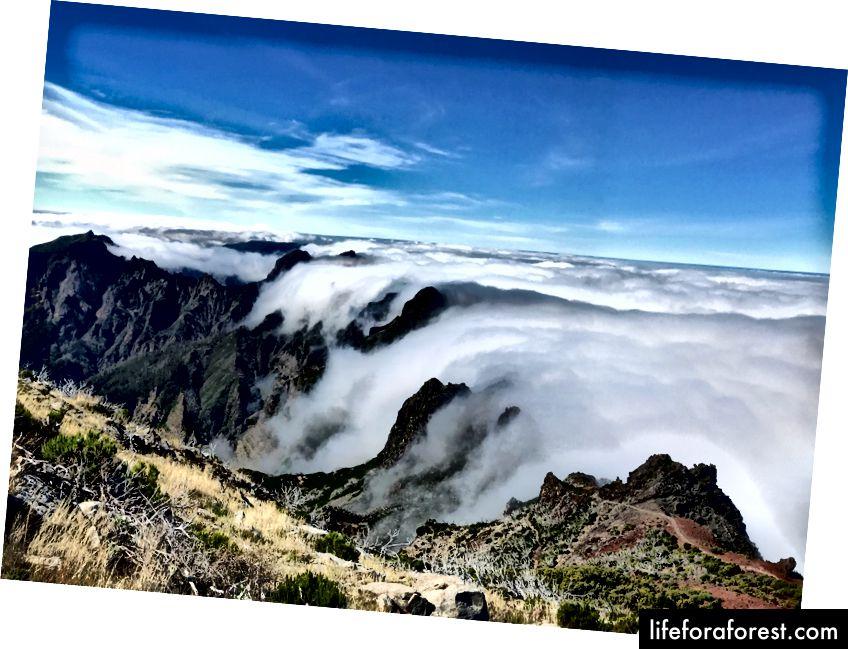 Pradėjau šį žygį lyjant lietui ir buvau sujaudintas * pakilti virš debesų. Pico Ruivo, Madeira.