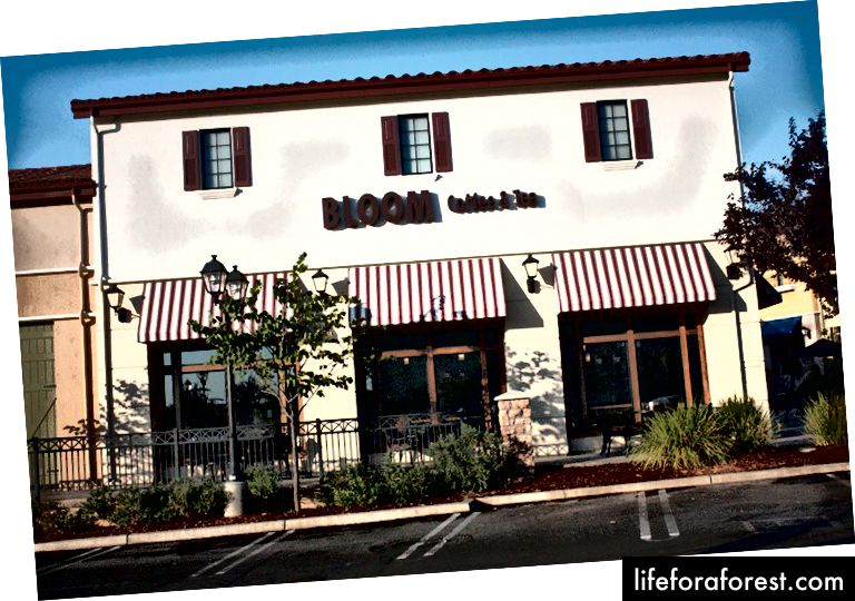 Bloom Coffee & Tea i Roseville, California.