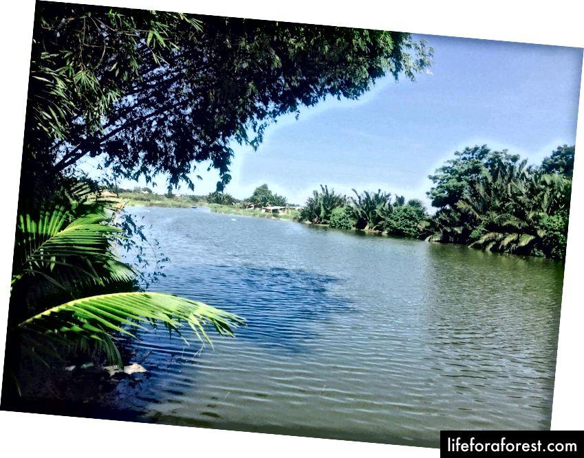 Pohled z ostrova Cẩm Nam.