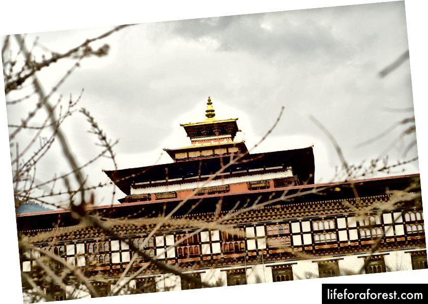 Foto oleh Sanchayeeta dan Chandrashekhar
