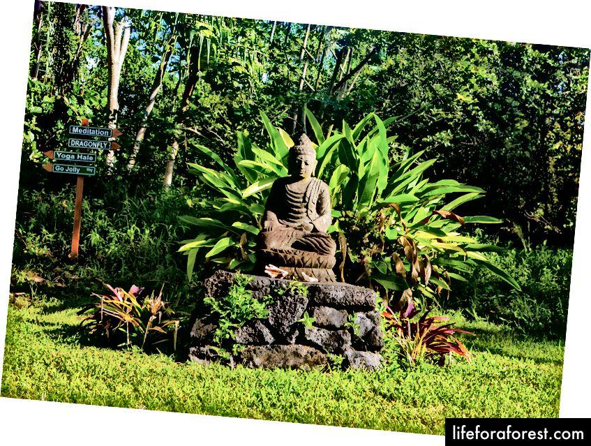 Tõeliselt maagiline koht (ja keegi ei käskinud mul seda öelda - see on tõsi!). Pildiallikas: Kirpali meditatsiooni- ja ökoloogiakeskus (KMEC).