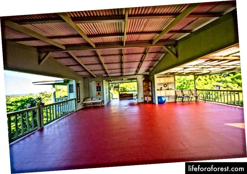 Tai jogos hale, kur praleidau didžiąją laiko dalį. Vaizdo šaltinis: Kirpalo meditacijos ir ekologijos centras (KMEC).