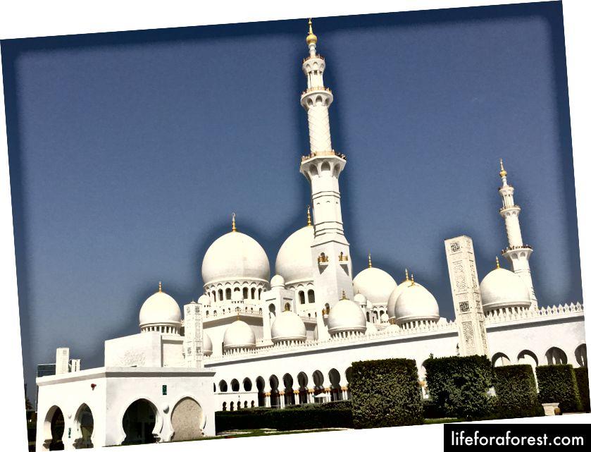 Shayx Zayd buyuk masjidi