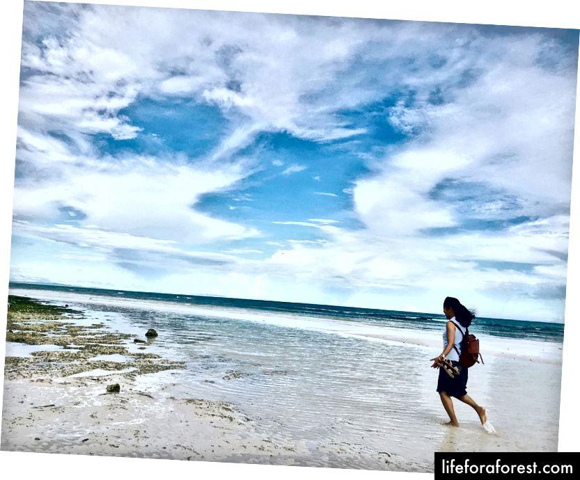 Perjalanan tidak perlu mahal dan banyak kesilapan. Anda periksa bandar seterusnya sejam dari rumah dan anda akan mengetahui. Berenang di pantai yang menakjubkan ini di Anda, wilayah Bohol di Filipina adalah percuma dan kurang dikunjungi oleh pelancong. Tetapi ia boleh bersaing dengan resort pantai mewah dari segi kecantikan semula jadi. Dan ya, matahari terbenam yang luar biasa!