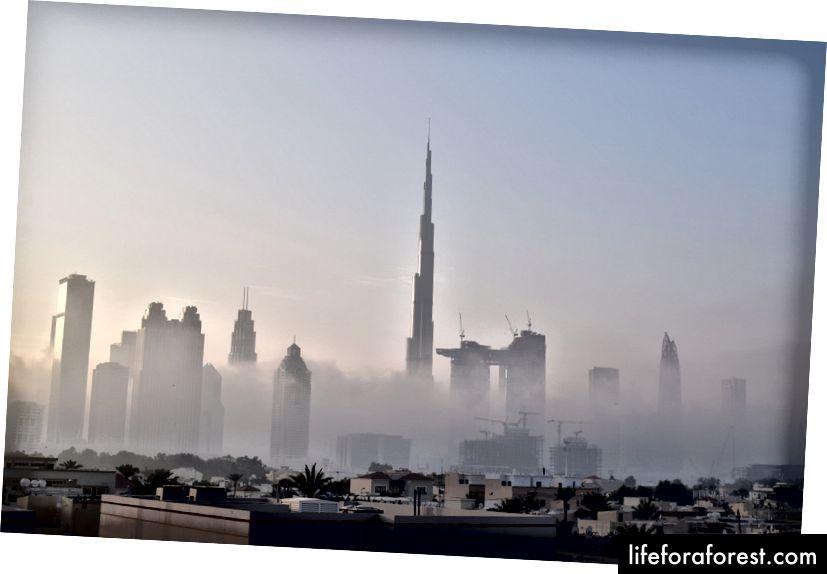 Dubai (Mặt trời mọc), Các tiểu vương quốc Ả Rập thống nhất