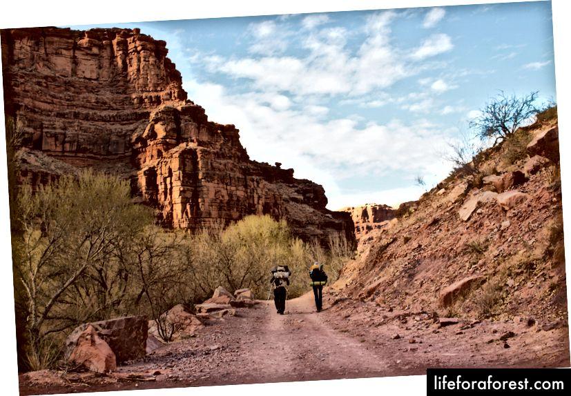 Họ don lồng gọi nó là - Grand - Canyon cho nothin