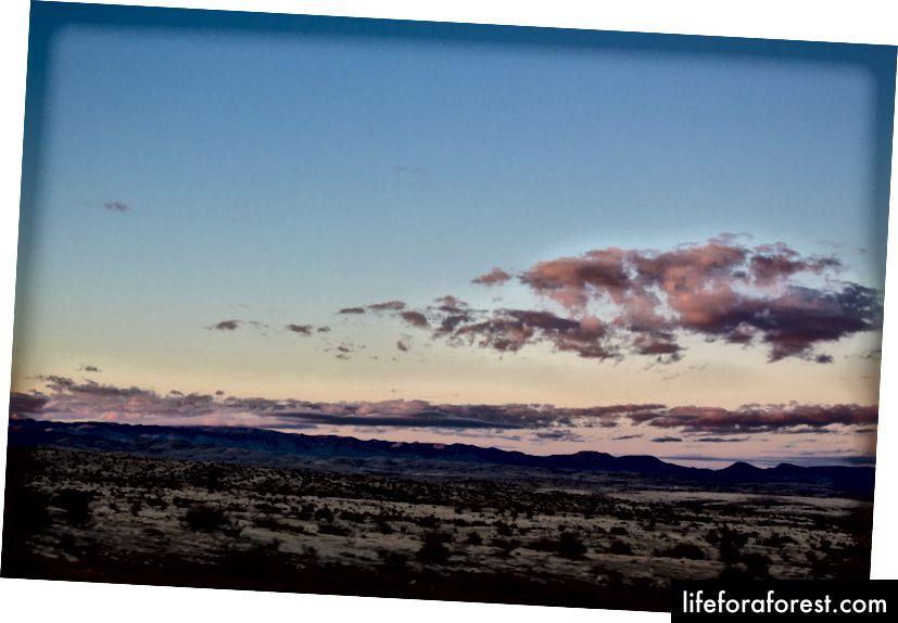 En ørken ugjestmilde, men likevel så synlig at den er kriminell