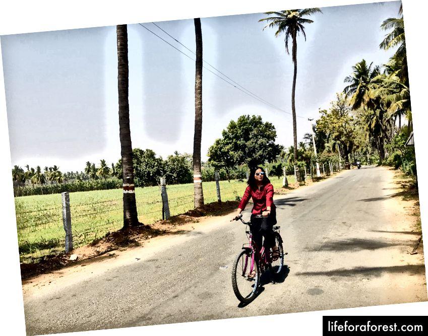 Situs melompat-lompat dengan sepeda :)
