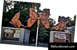 Park motyli