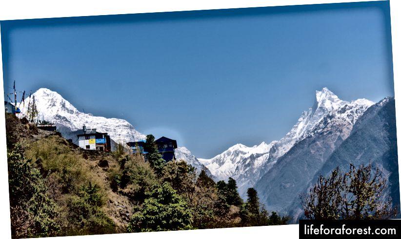 Annapurna South (til venstre) og Mt. Machhapuchre (til høyre)