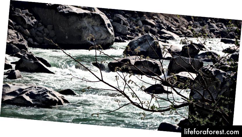 كنا في المسافر لدينا العودة إلى دهرادون. بينما في طريقنا إلى الوراء نجد أن هذا المجرى المائي يتدفق عبر الصخور. تتوقف الحافلة وقد وصلنا لترطيب أقدامنا في هذه المياه الجارية والحصول على بعض الصور. هذه المرة ما زلت أقابل صديقتي القديمة